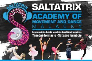 Saltatrix 2019